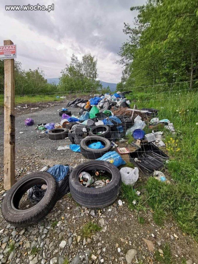 Wstyd-gmina-Milowka