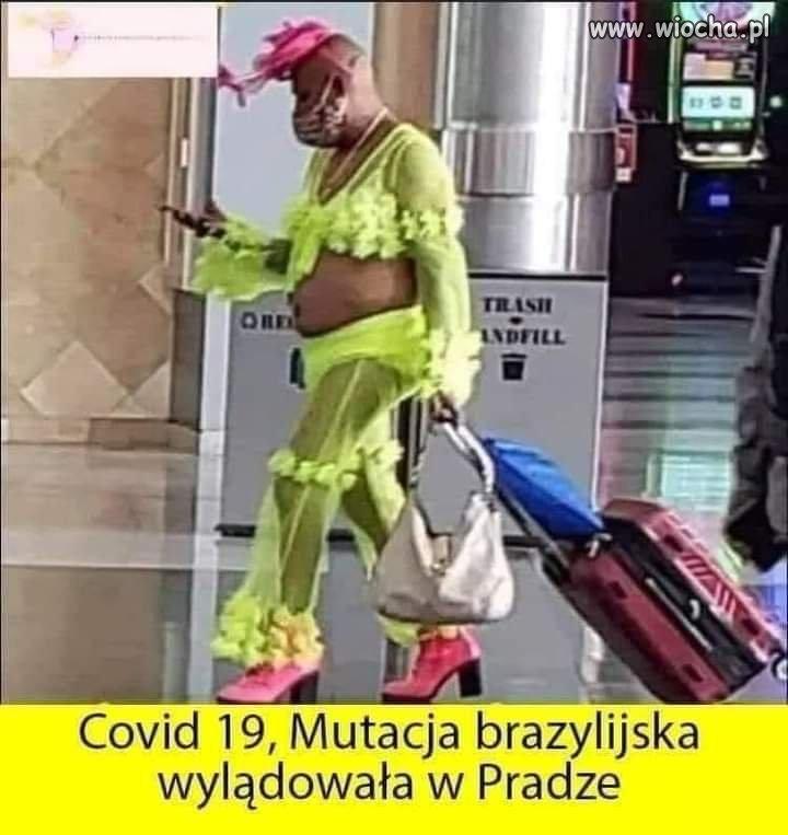 Covid-wyladowal
