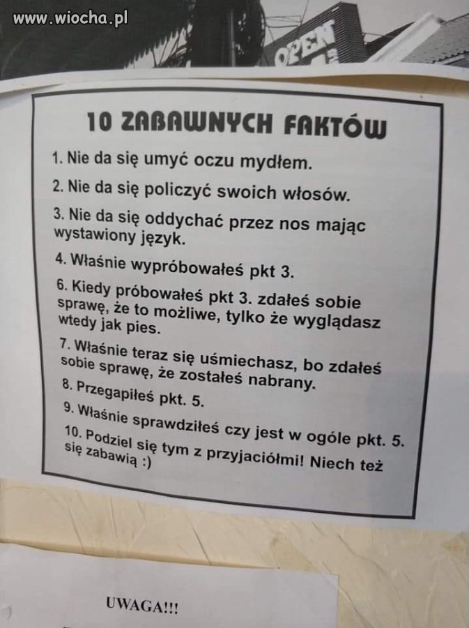 10-Faktow
