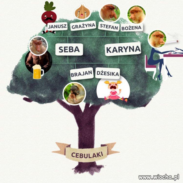 Drzewo genologiczne prawdziwego Polaka