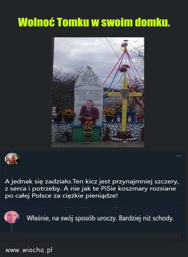 Wolnoc-Tomku-w-swoim-domku