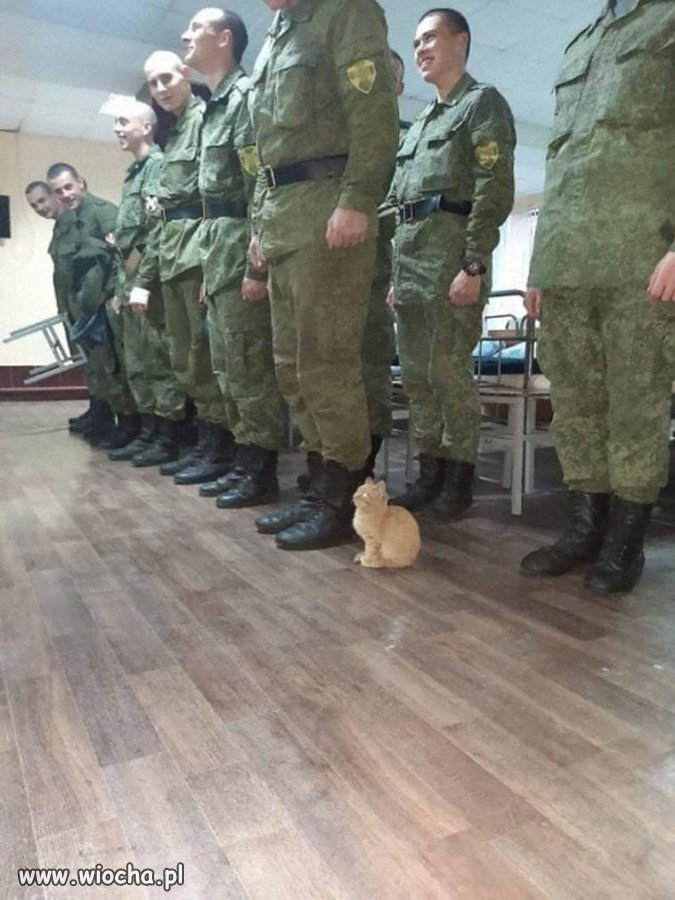 Jak wojsko to wojsko...