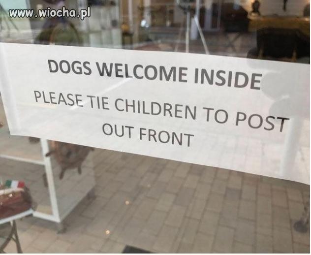 Psy-mile-widzianedzieci-prosze-przywiazywac