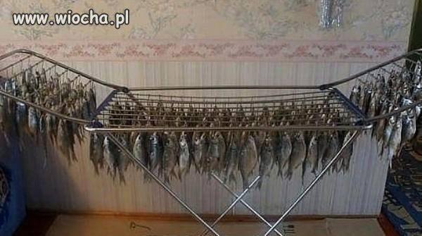 Suszenie ryb w Rosji.