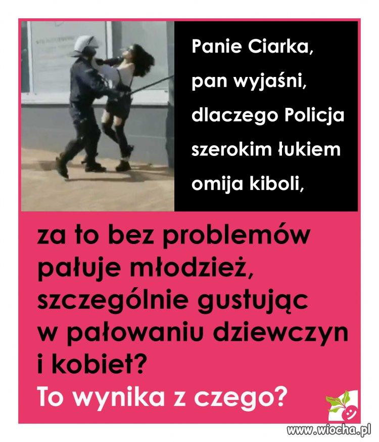 Polska milicja w akcji