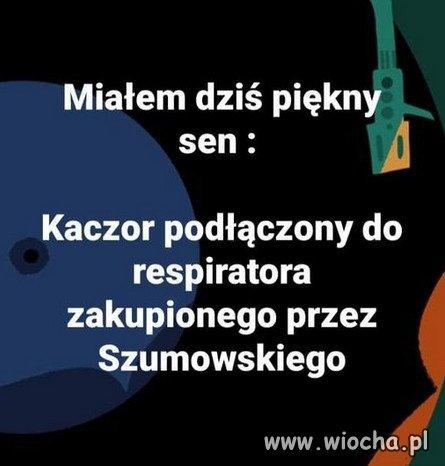 Znalezione-w-czelusciach-internetu...-amp128521